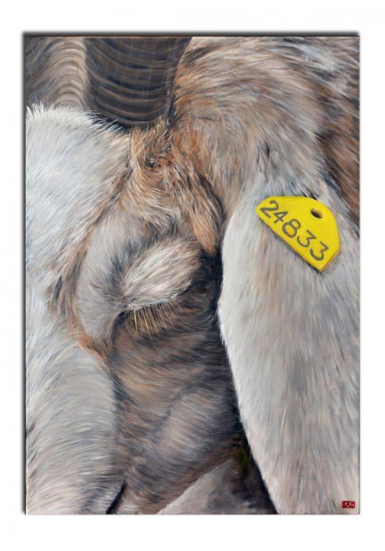 Träumende Ziege, gemalt in Öl auf Leinwand von SÄS - www.sellerie.de